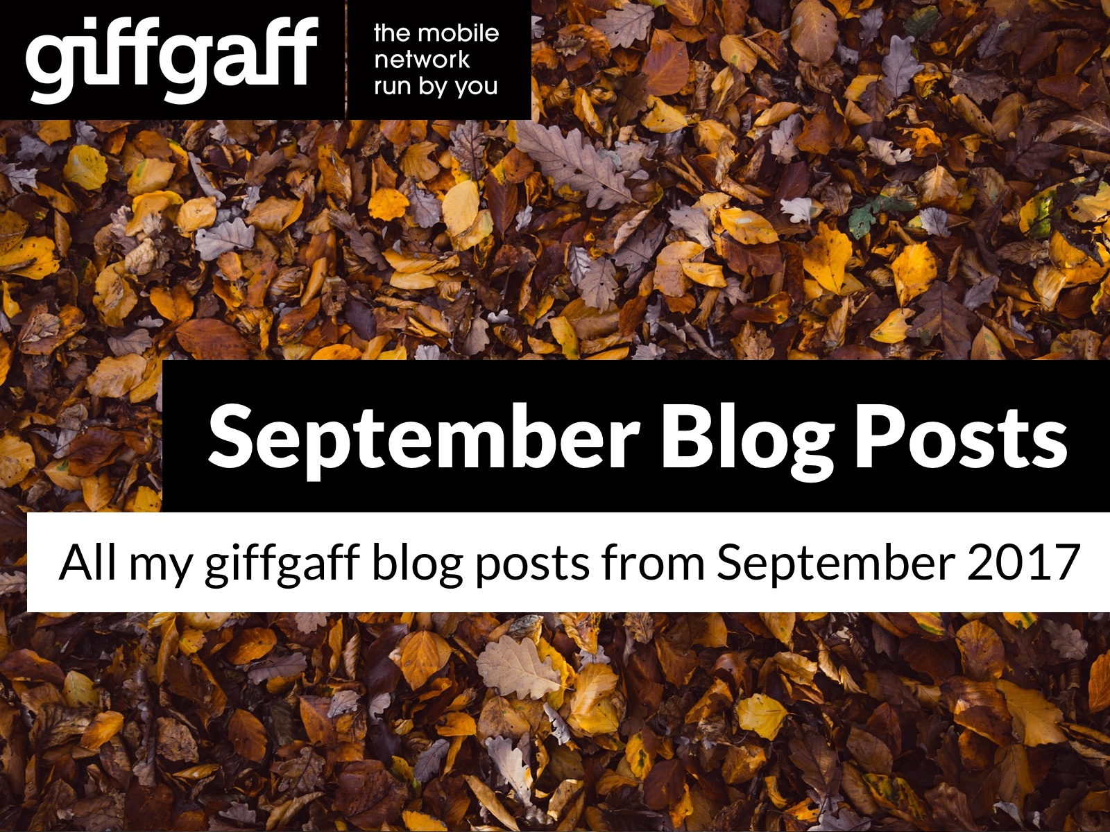 September 2017 Blog Posts