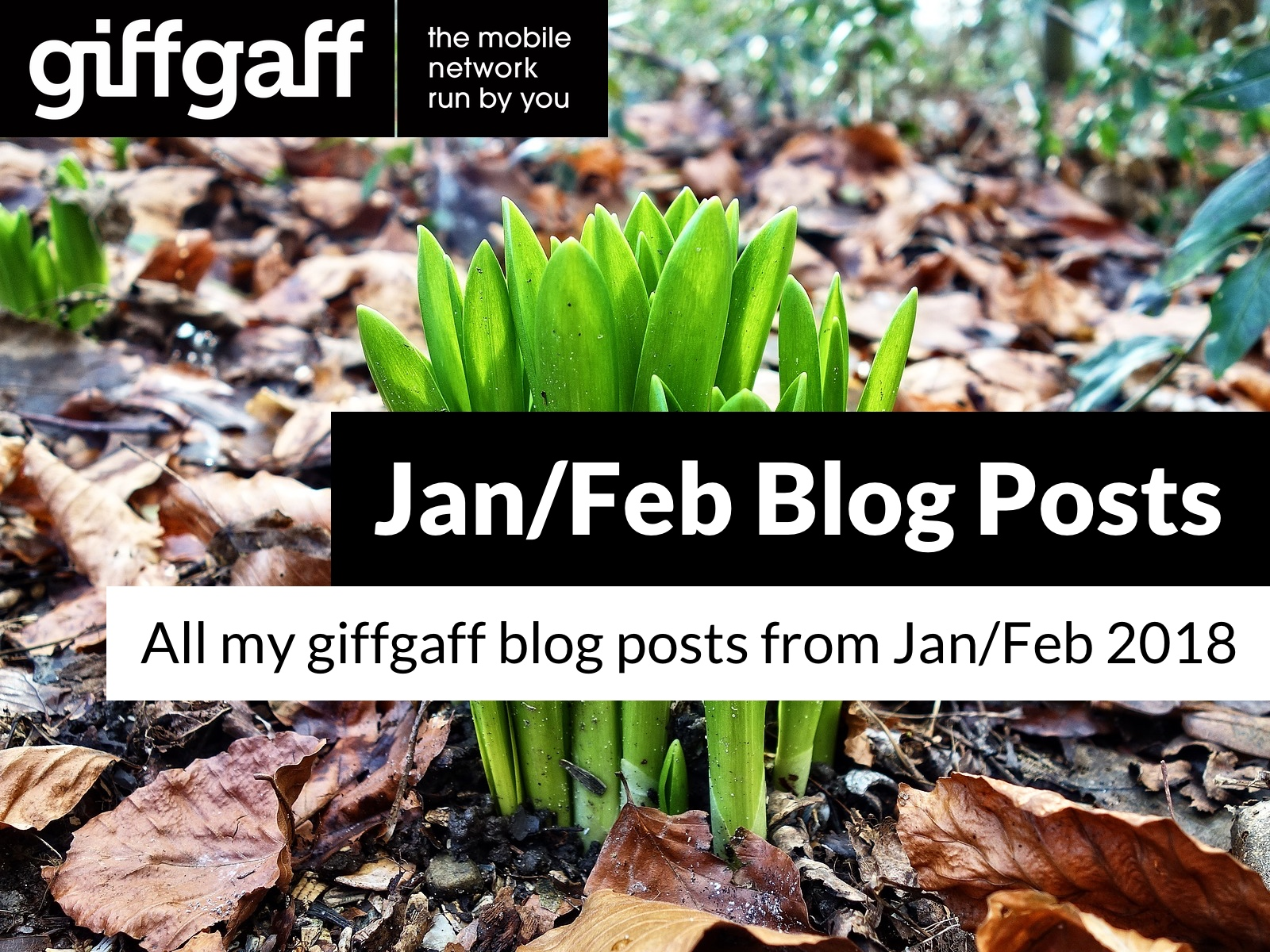 Jan/Feb 2018 Blog Posts