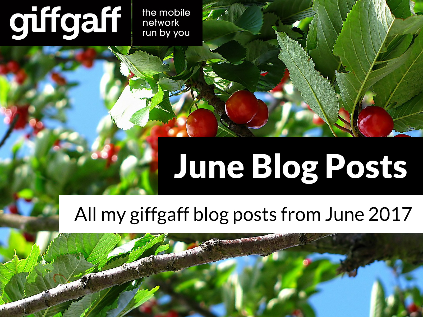 June 2017 Blog Posts